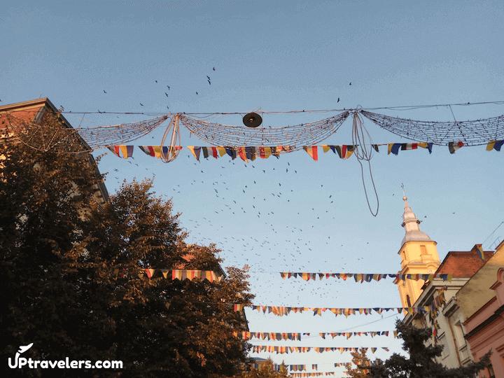 Люди в Берегово (Закарпатская область)