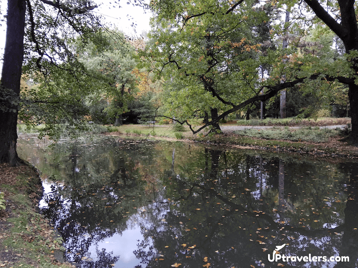 Интересные места: Щитницкий парк во Вроцлаве